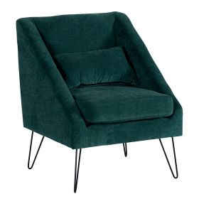 Lot 2 fauteuils design Victoria Casita FAUVICPET