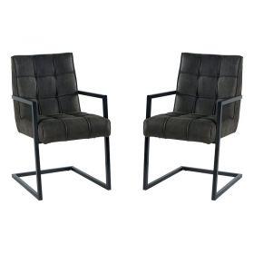 Lot de 2 chaises polyester CHA 170GRIFON