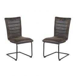 Lot de 2 chaises polyester CHA 400GRI